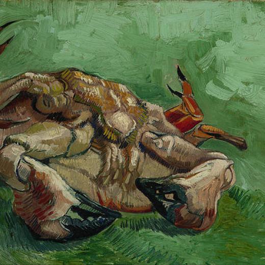 2-a-crab-on-its-back-vincent-van-gogh
