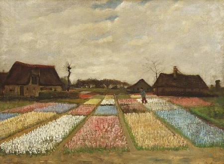 Flower Beds In Holland Print