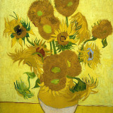 Fifteen Sunflowers In A Vase Print
