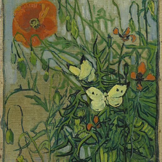 3-butterflies-and-poppies-vincent-van-gogh