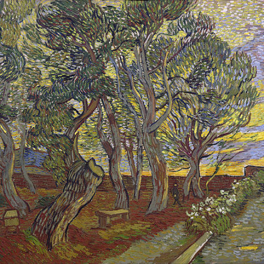 4-the-garden-of-saint-pauls-hospital-vincent-van-gogh