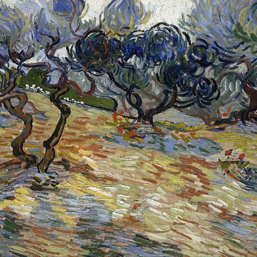 7-olive-trees-vincent-van-gogh