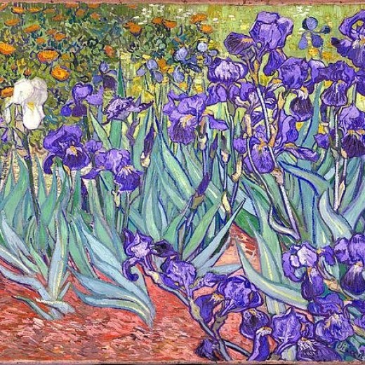 purple-irises-vincent-van-gogh
