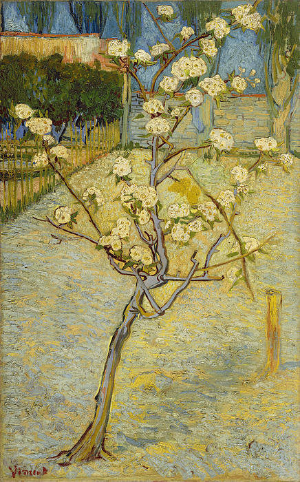 1-small-pear-tree-in-blossom-vincent-van-gogh