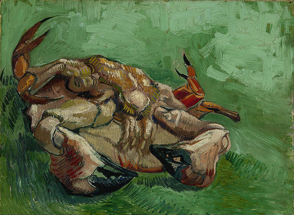 2-a-crab-on-its-back-vincent-van-gogh