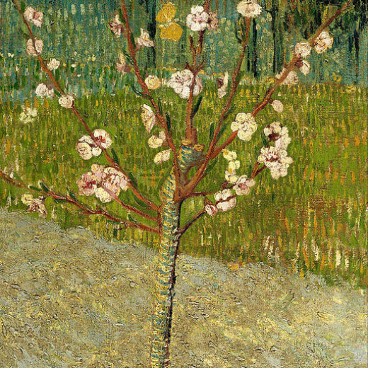 2-almond-tree-in-blossom-vincent-van-gogh