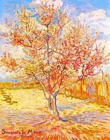 Vincent Van Gogh Peach Tree in Blossom