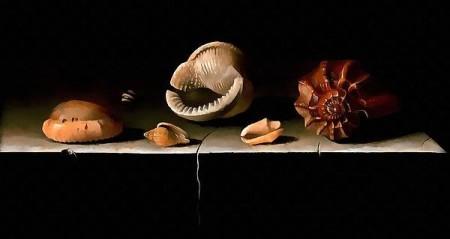 Adriaen Coorte Six Shells On A Stone Shelf